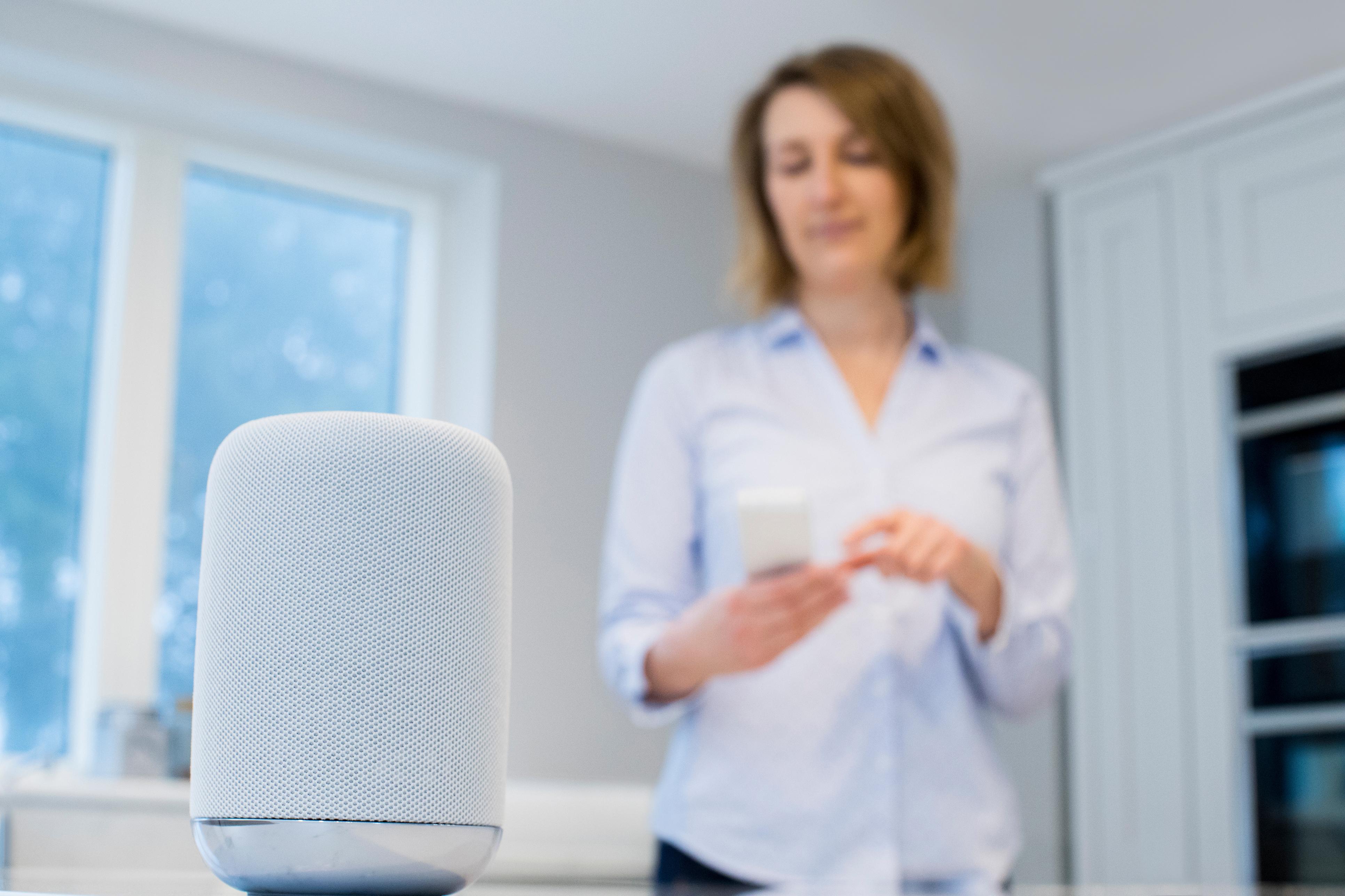 digital assistant home